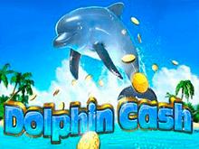 Dolphin Cash на зеркале Вулкан